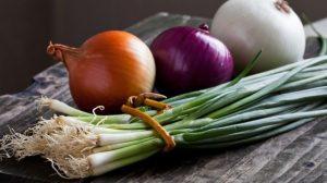 الفرق بين أنواع البصل المختلفة