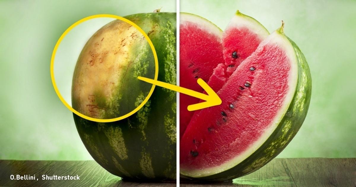 كيف تختارين البطيخ الأحمر؟