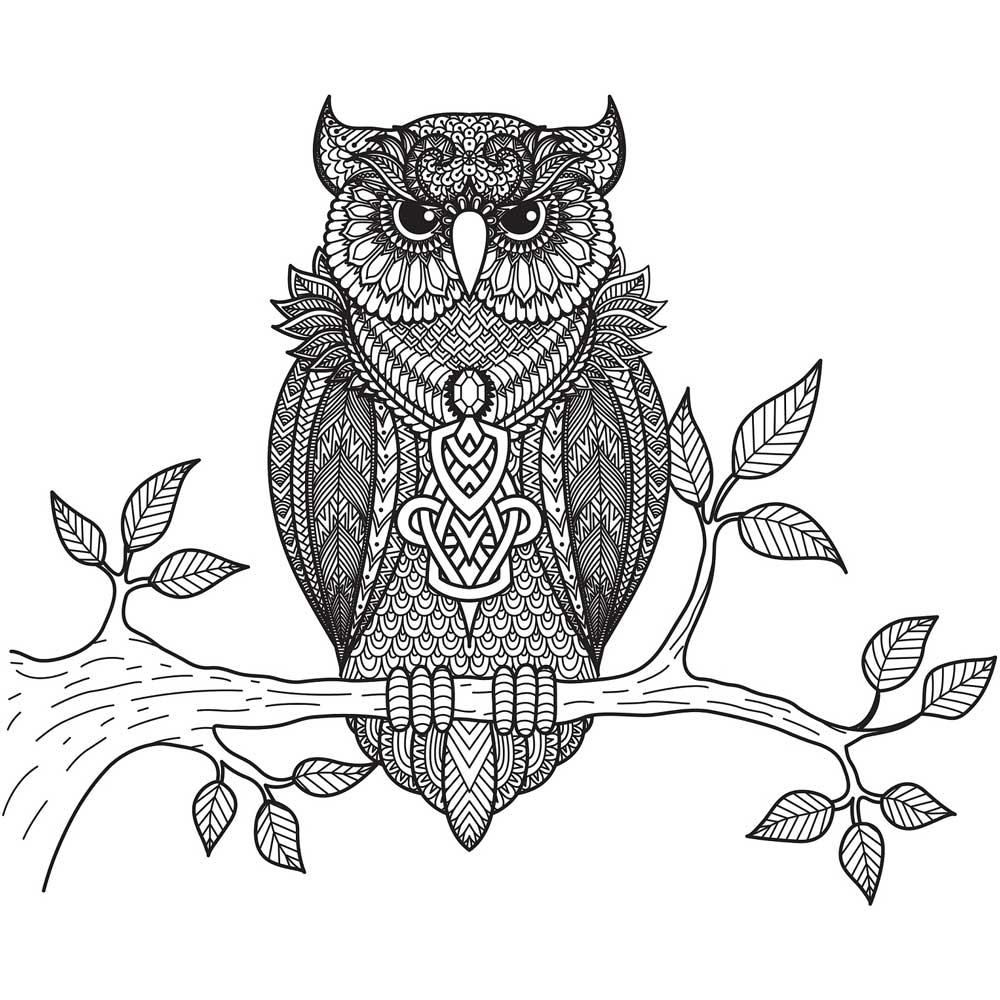 رسم ماندالا للبومة للتلوين